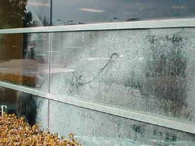 Commercial office building window with hard water build up due to a sprinkler.